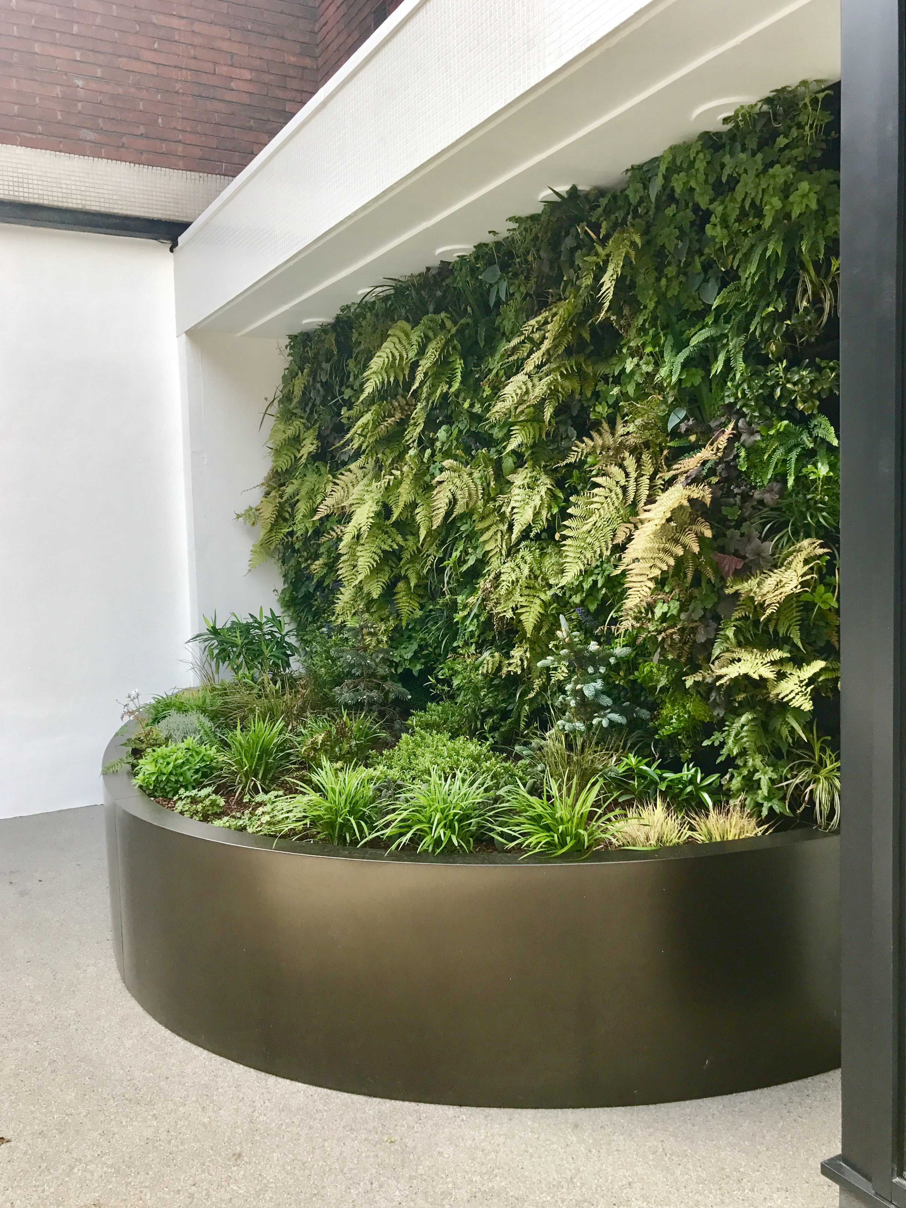 Living Wall at Bedford Hotel
