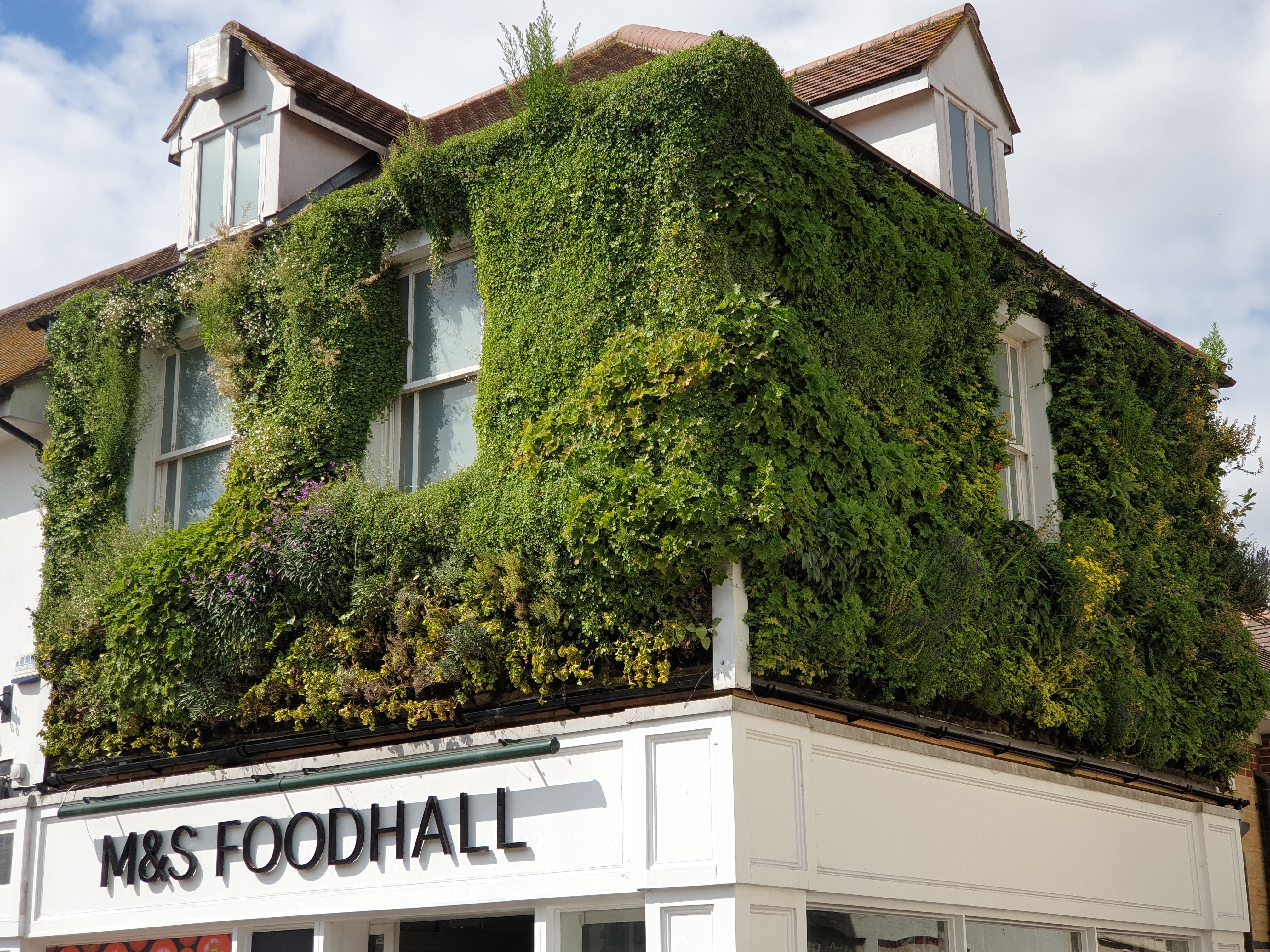 Living Walls Marks and Spencer Epping