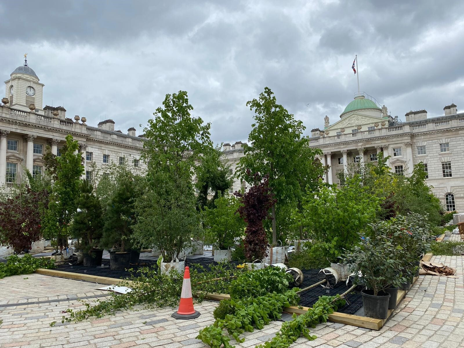 Living wall green wall somerset house before image