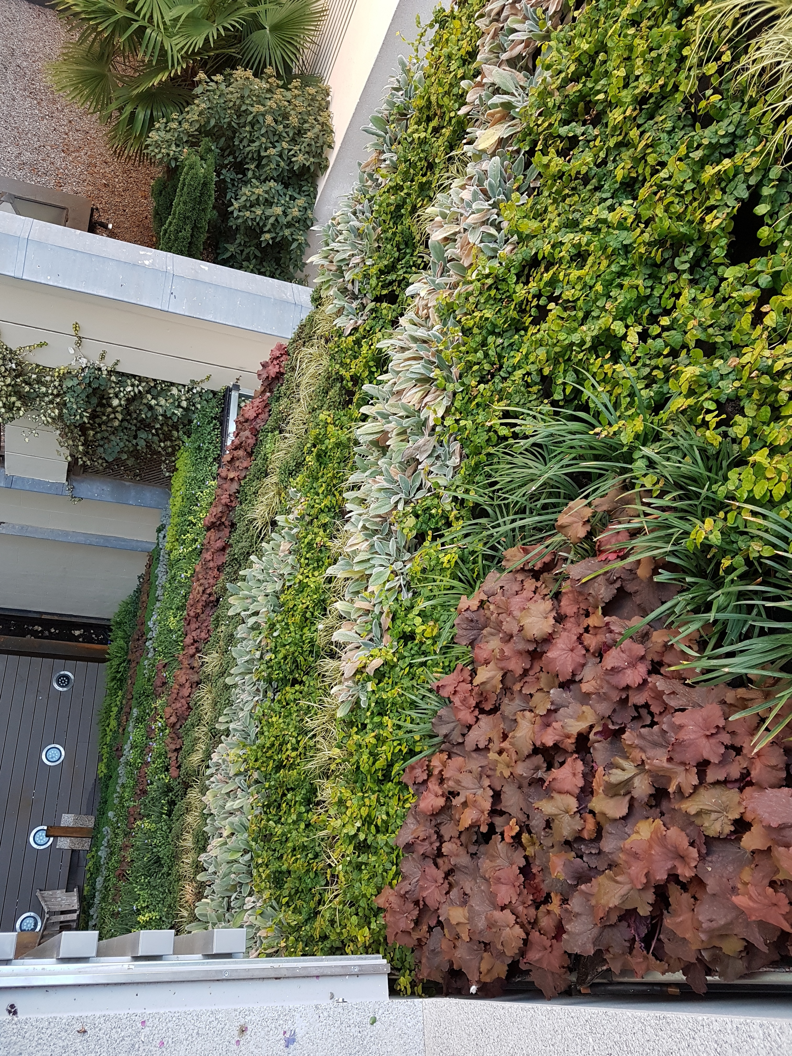 Living Wall CPD