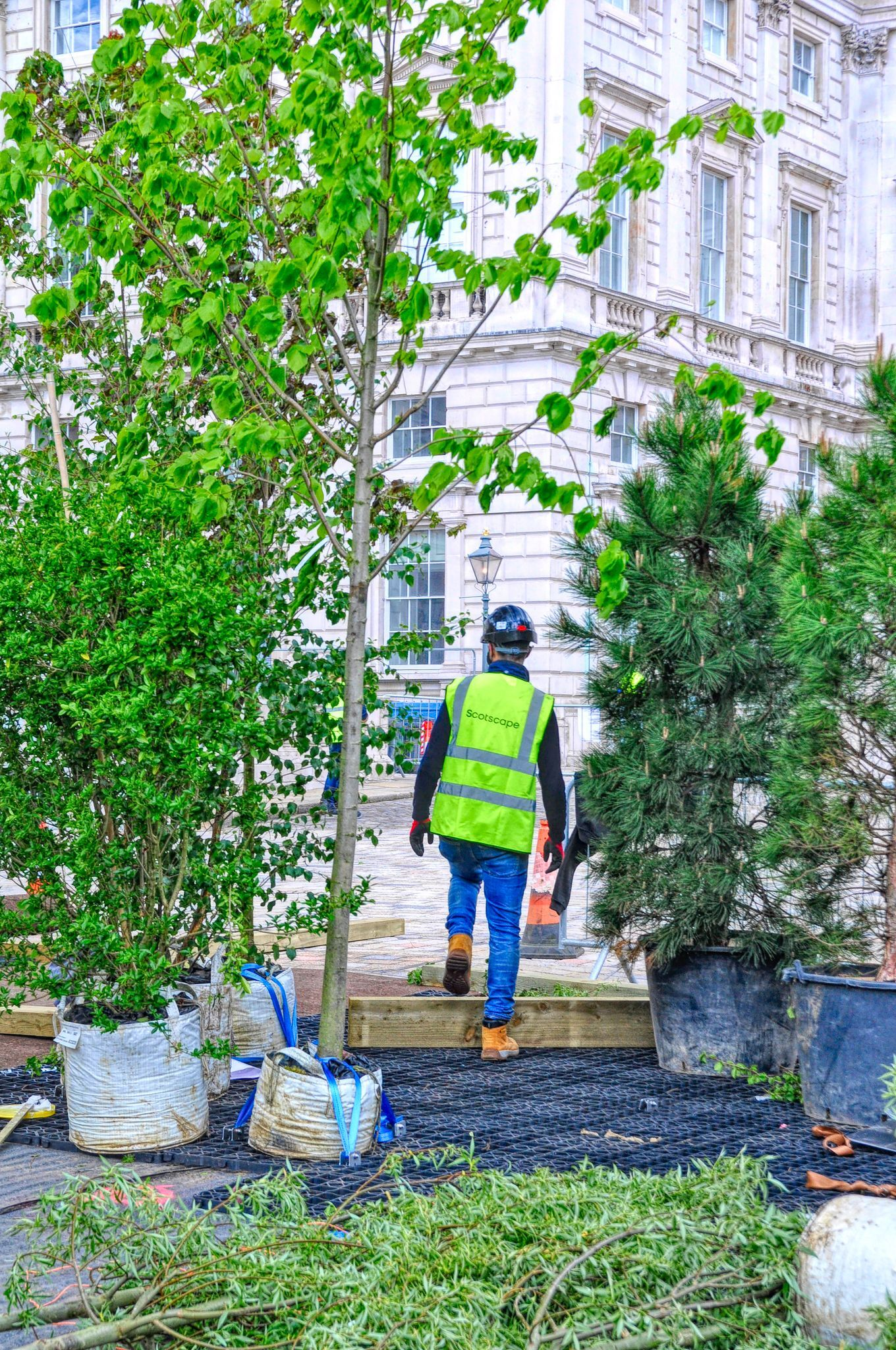 Installation of Forest For Change at the London Design Biennale