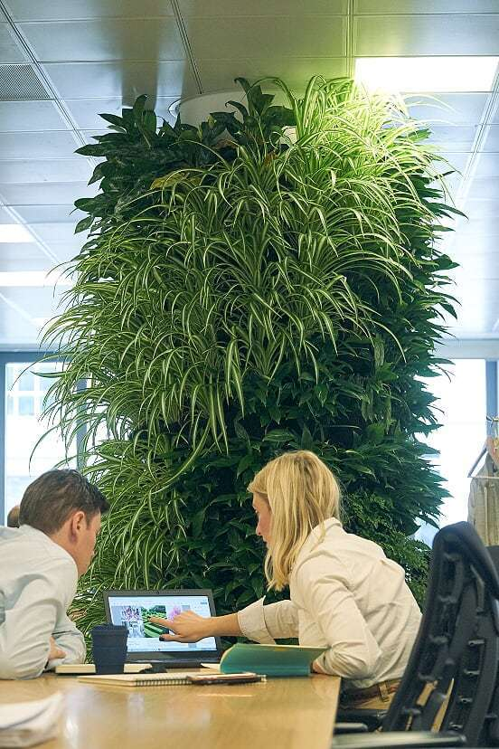 Living Wall Column at Grosvenor Britain and Ireland offices