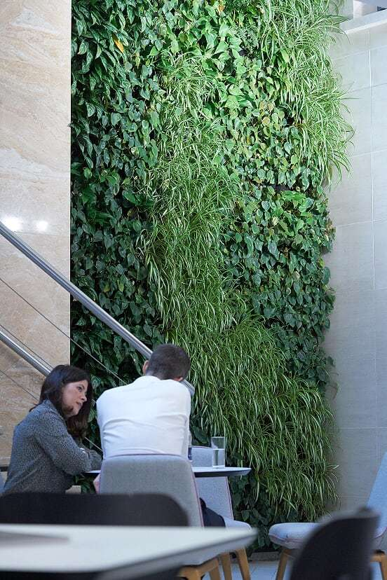 Living Wall Interior Meeting Space Grosvenor Head Office