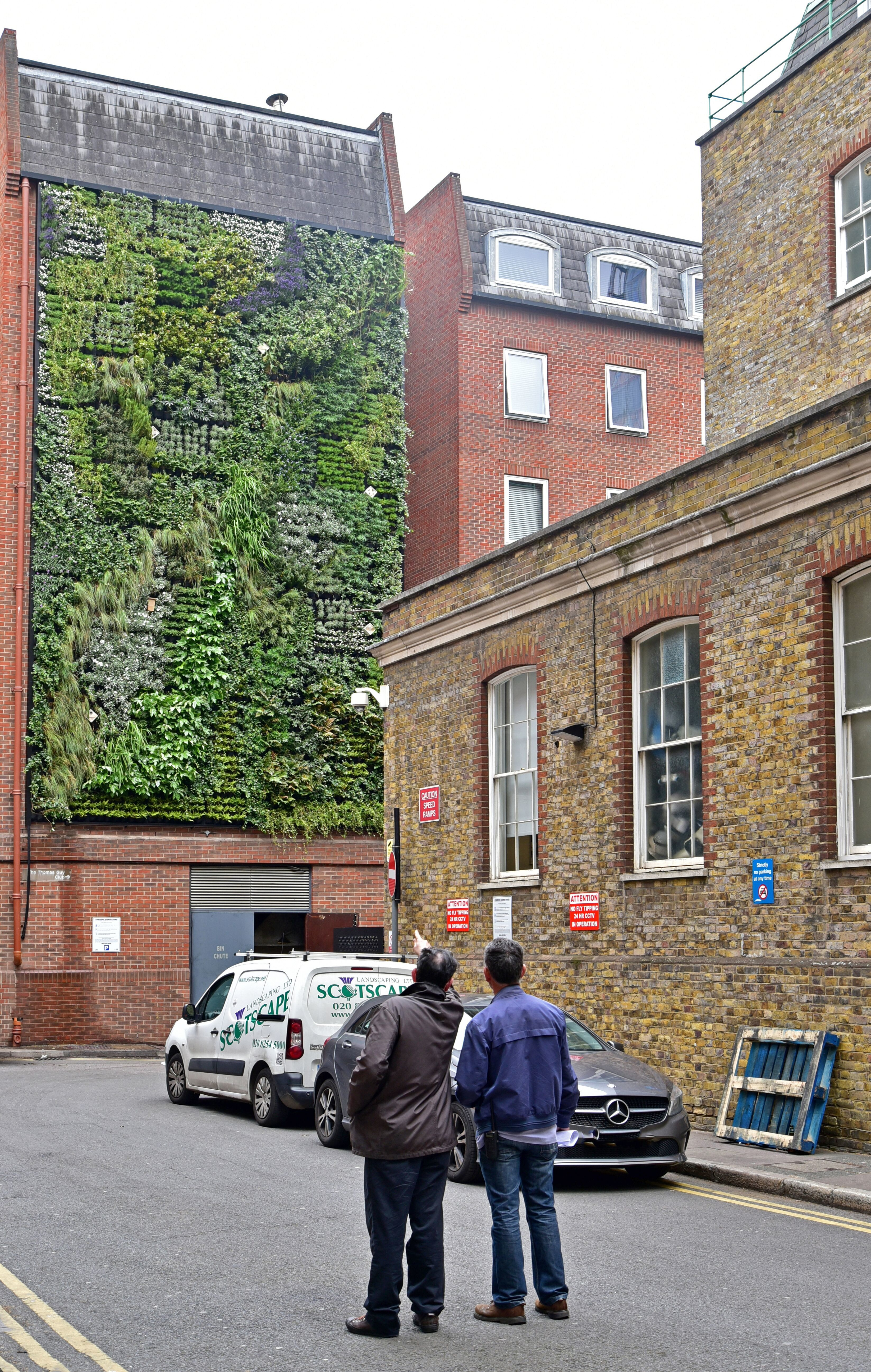 Living Wall Team London Inspection