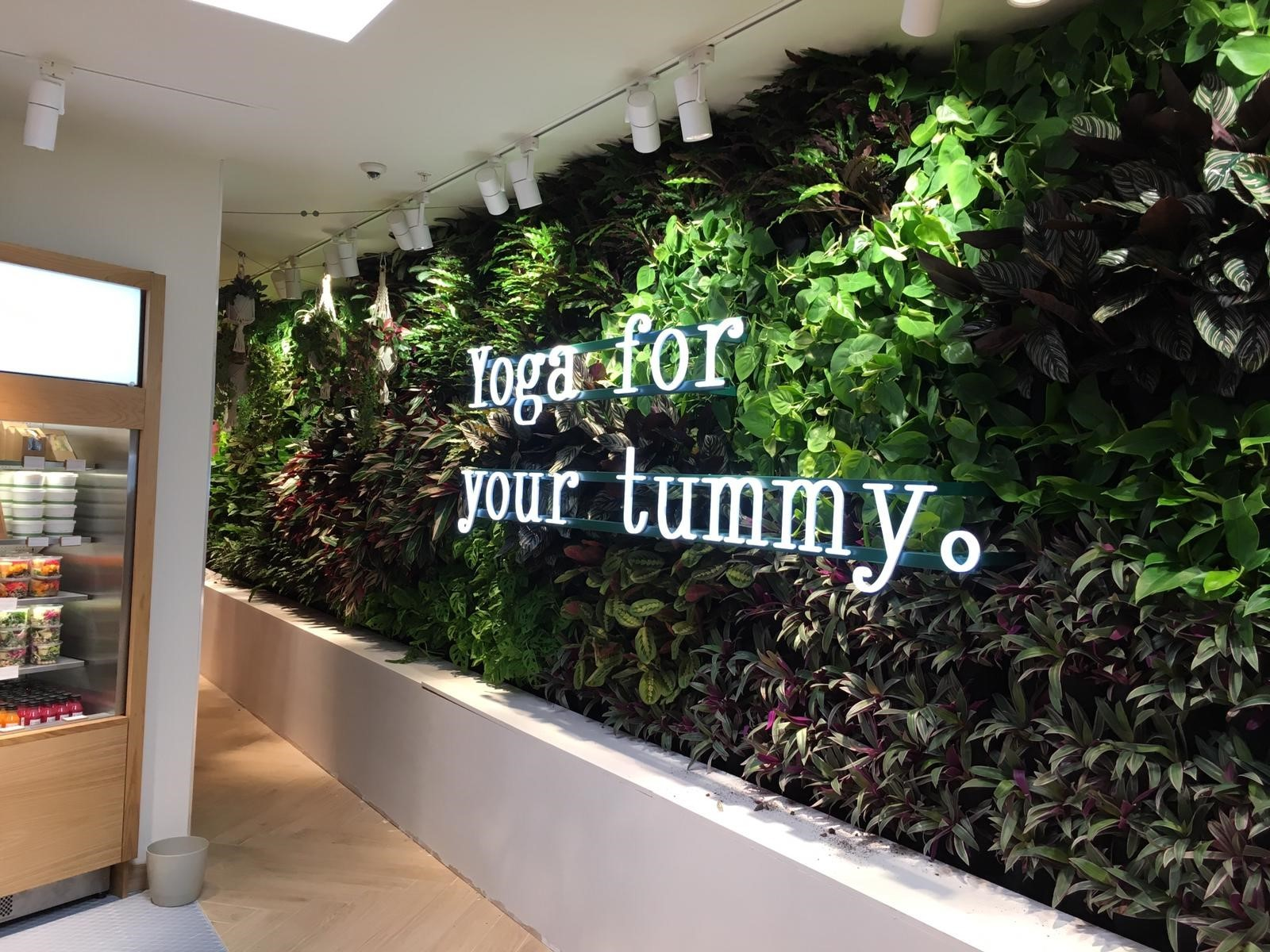 Living Walls at H&M Westfield Shepherds Bush London