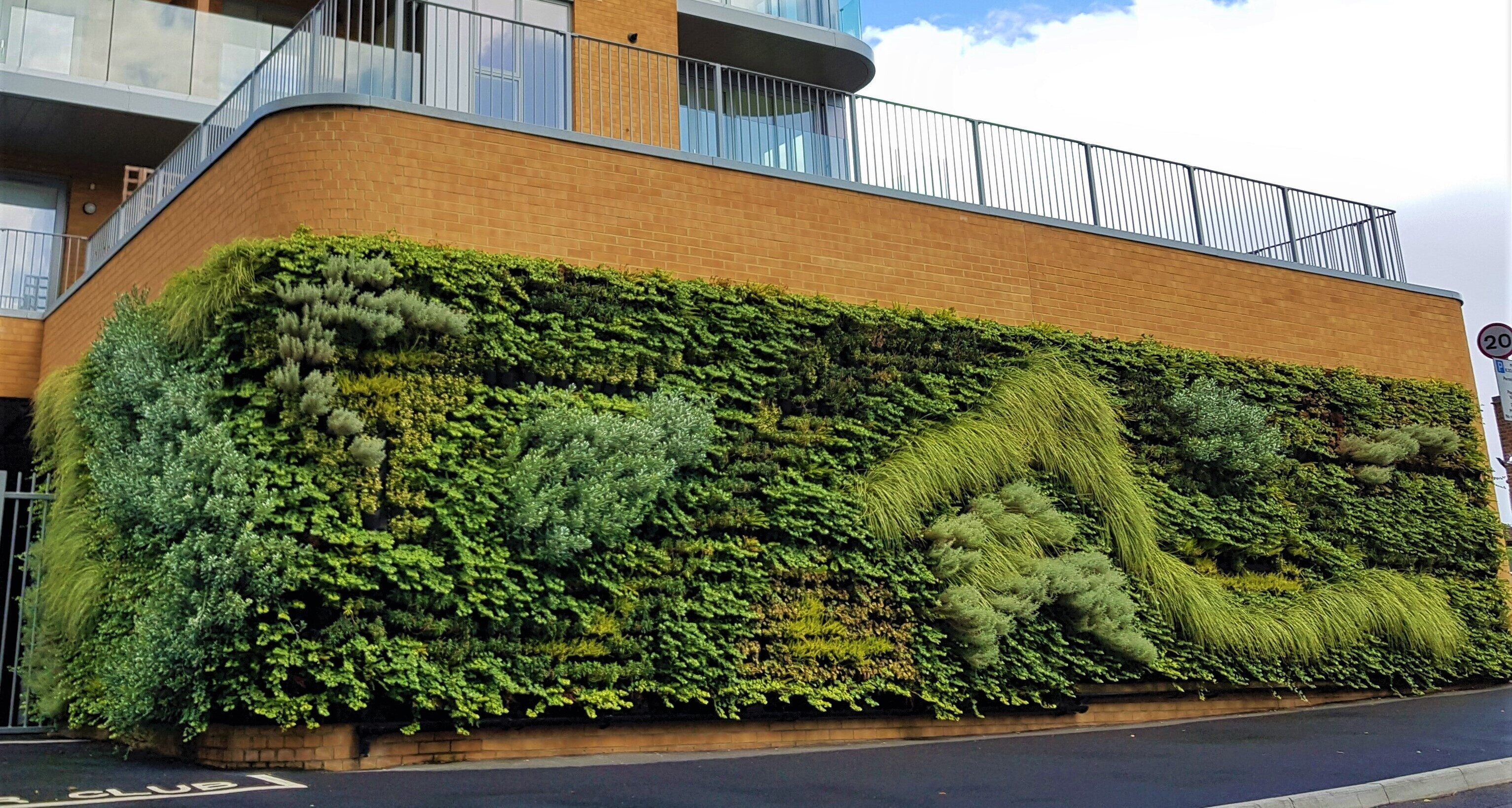 Living Wall Green Wall example