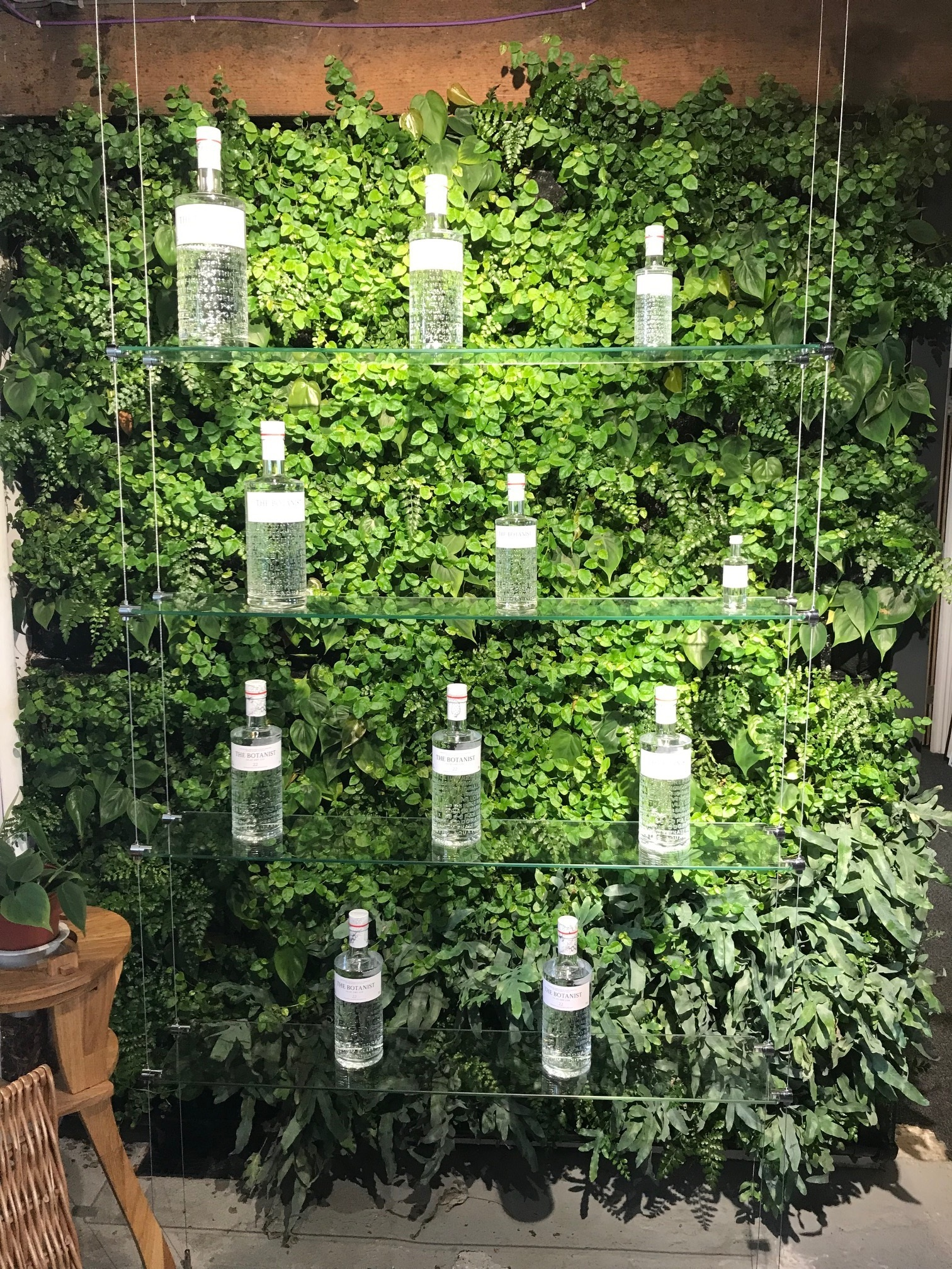 Living Wall for Bruichladdich Distillery Gin Display