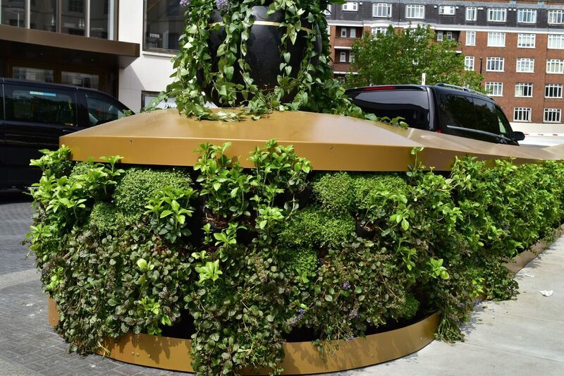 Living Walls Green Walls Grounds Maintenance BALI Awards