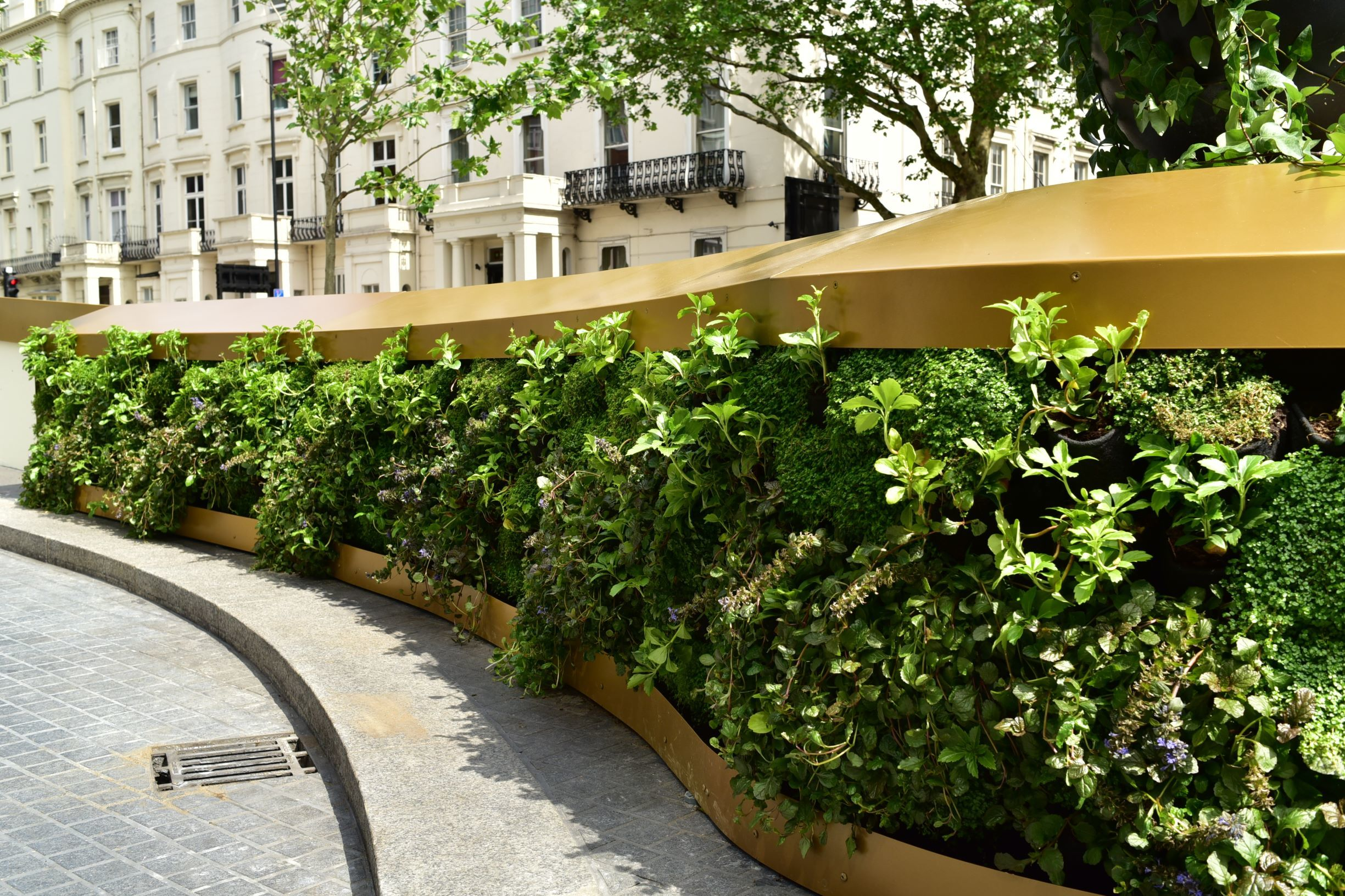 Dramatic Living Wall Outside Royal Lancaster Hotel