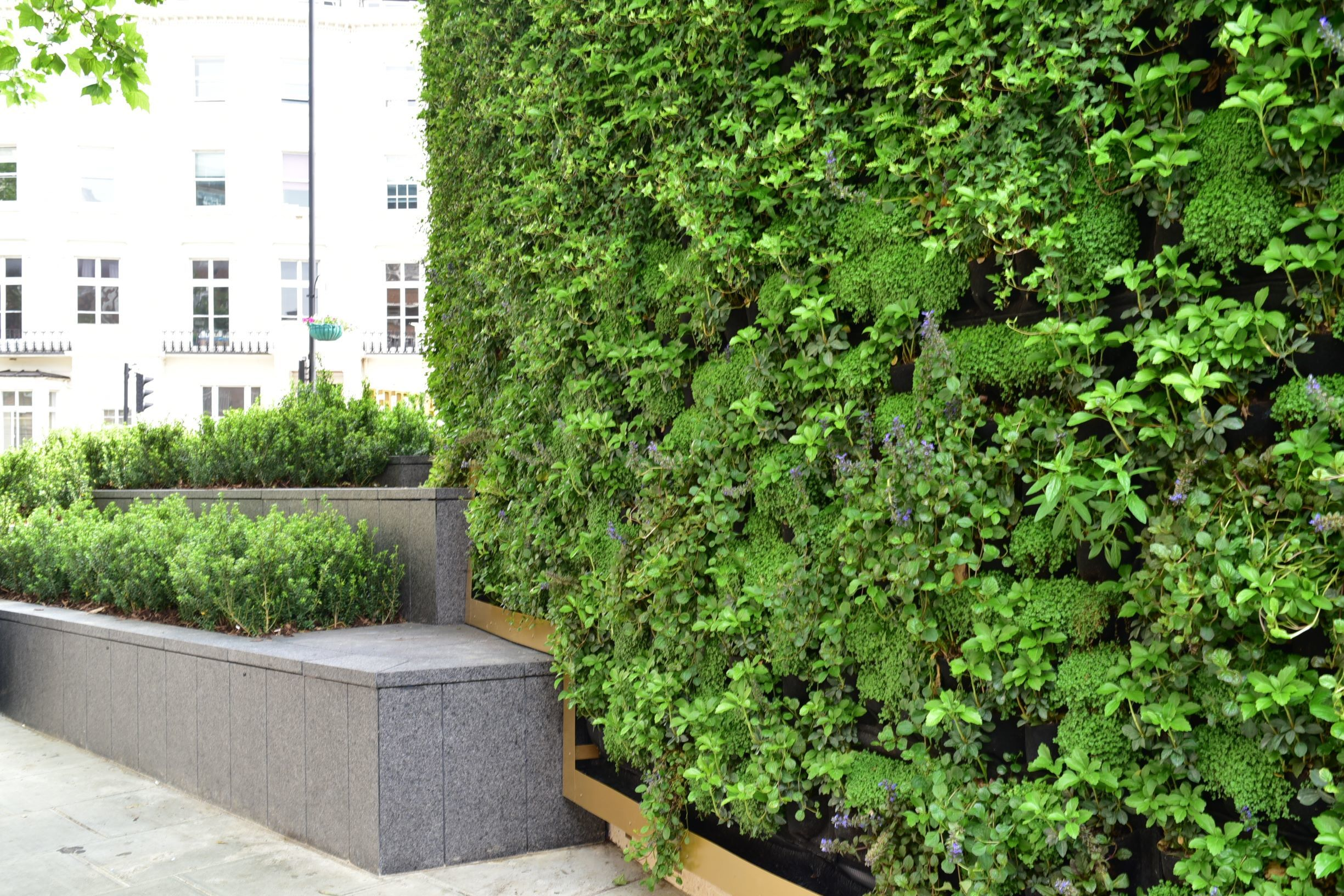 Green Wall Living Wall Royal Lancaster Hotel
