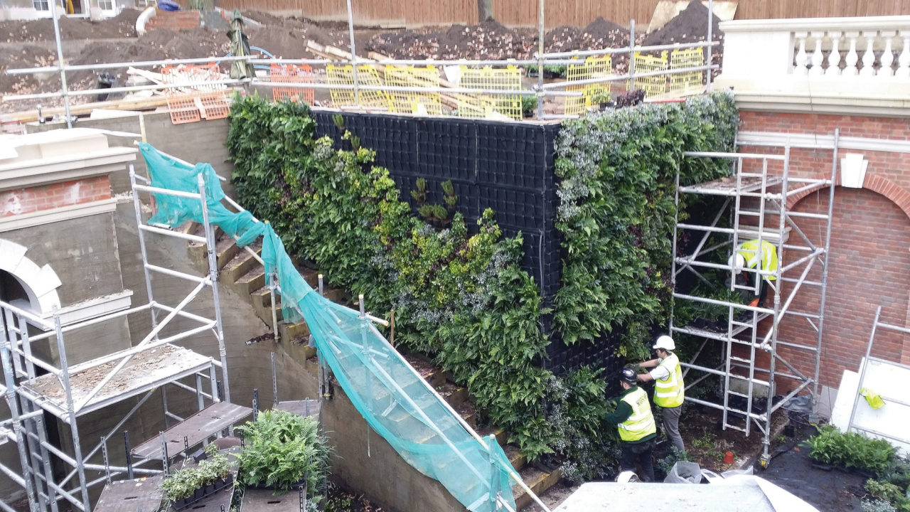 Living Walls constructed with FYTOTEXTILE for plant health