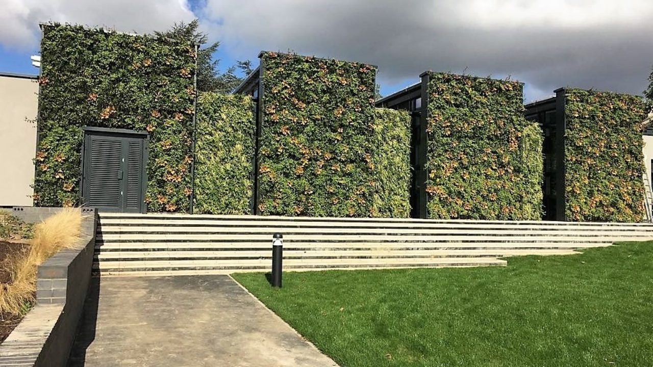 230m2 of Living Walls installed at Parliament Hill School
