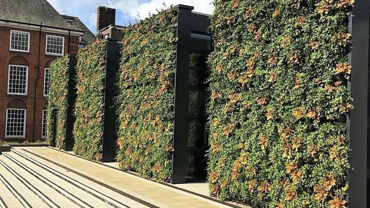 Living Walls and plant barriers to improve air quality in schools