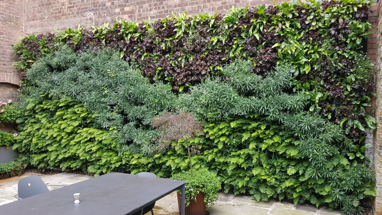 We are Seeking a Living Wall Technician to Join Our Team.