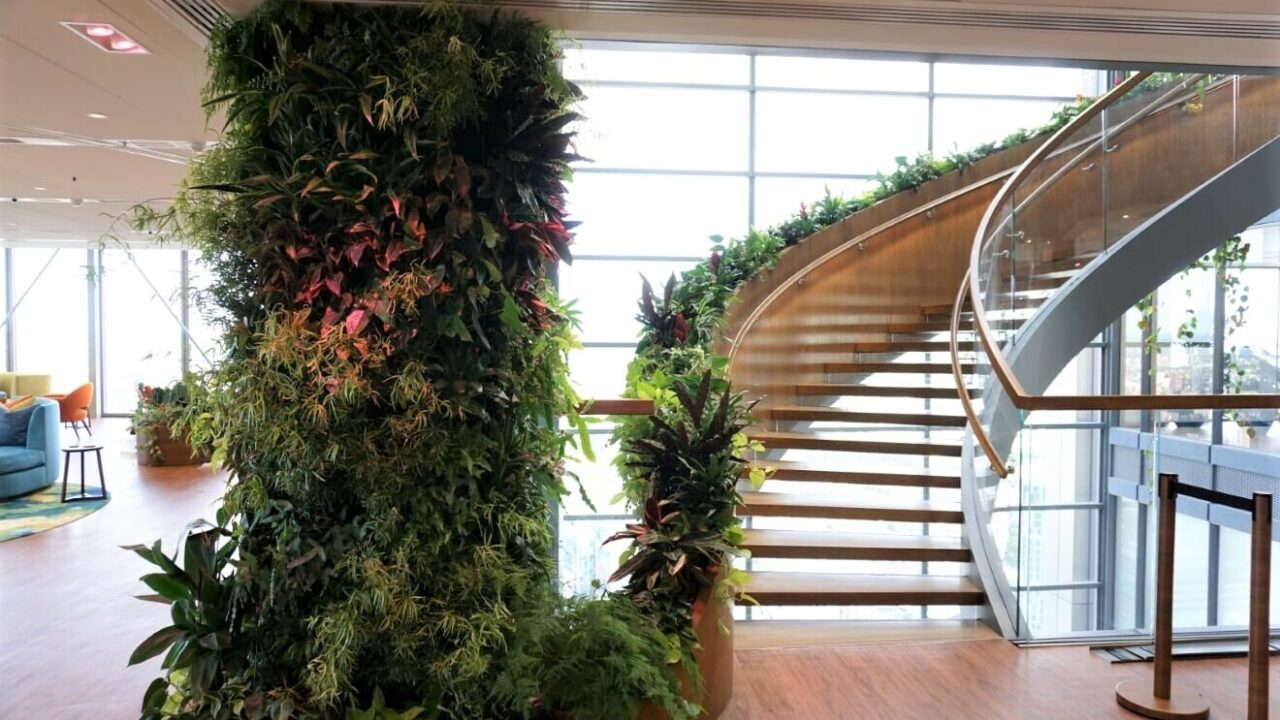 The office Jungle and why it might help get staff back to work