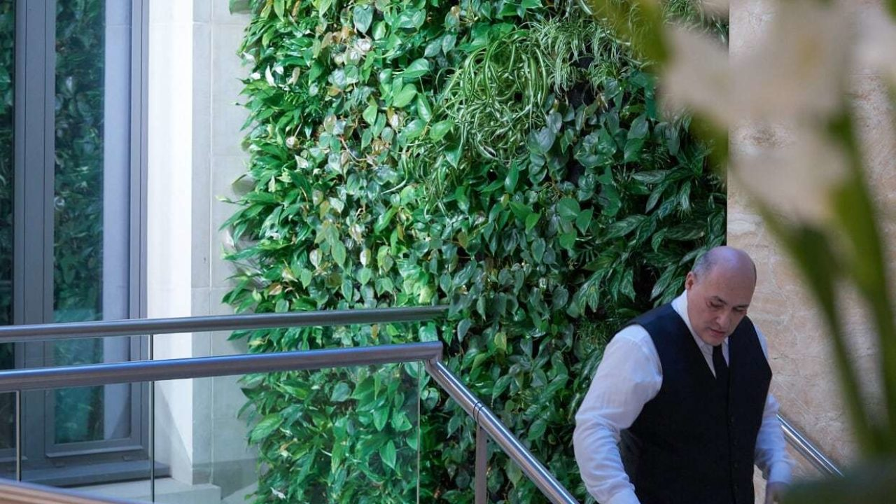 Living Walls for a Healthy Workplace