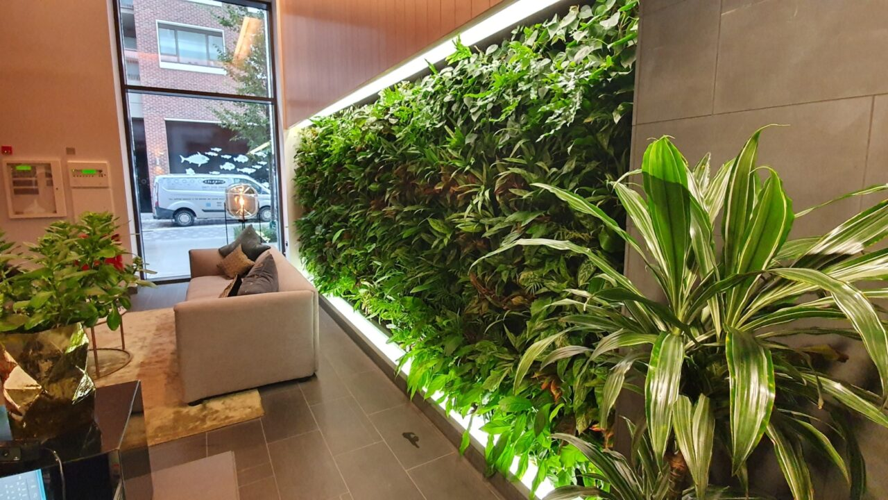Living Walls CPD via Webinar