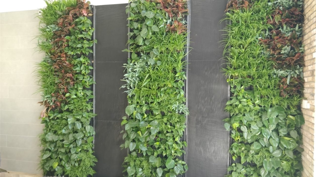 Book your Living Walls CPD today