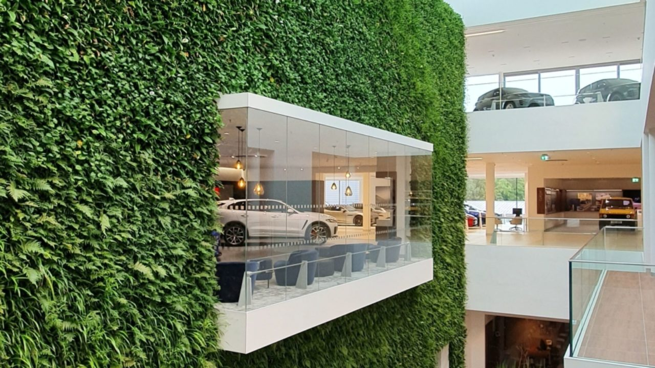 Living Walls CPD to inspire!