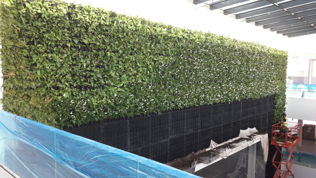 Living Wall CPDs for Architects