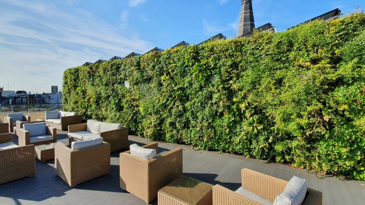 Living Walls - A Climate Change Mitigating Solution