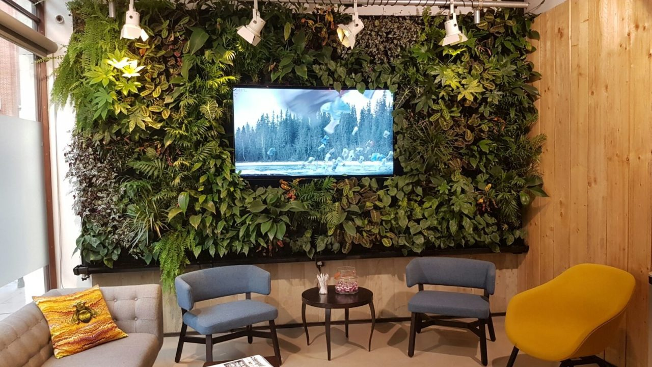 Living Walls for Health and Well-being