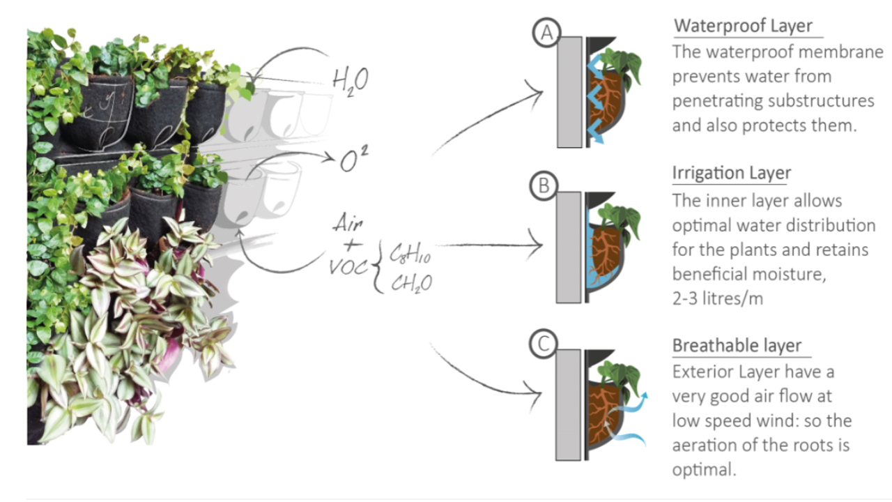 Fytotextile Living Wall for optimum plant health