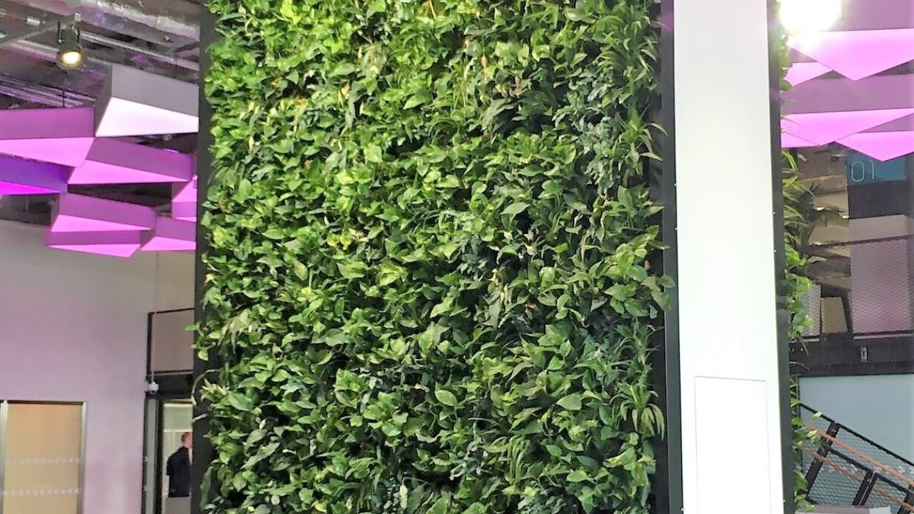 Bring nature into your office using living walls