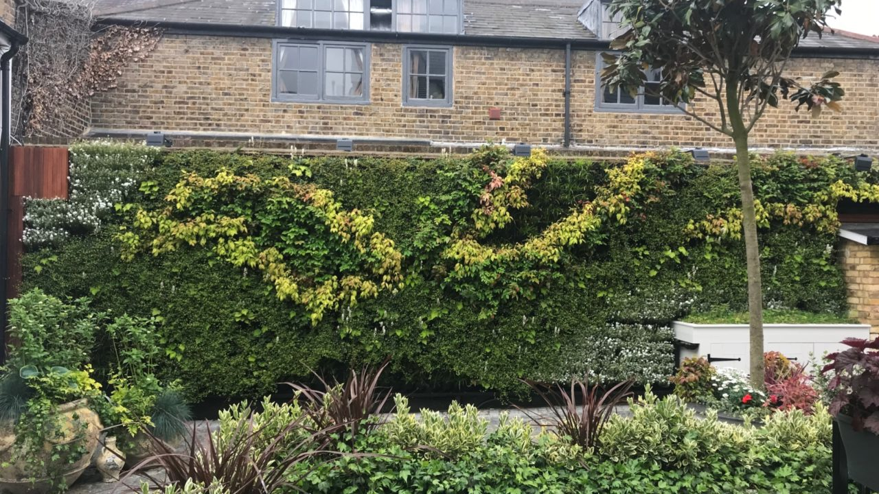 Living Walls for Property Developers