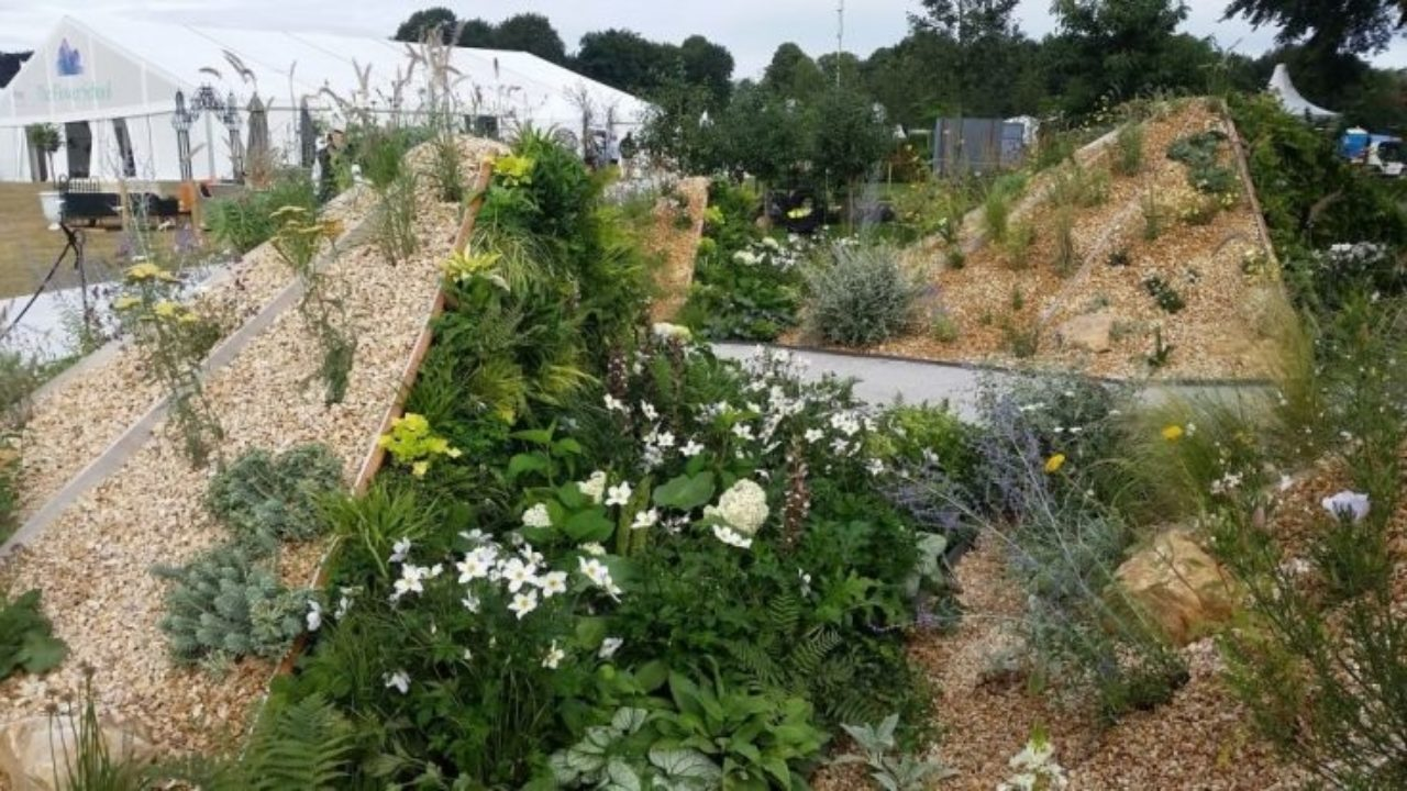RHS Tatton - The Oasis Garden
