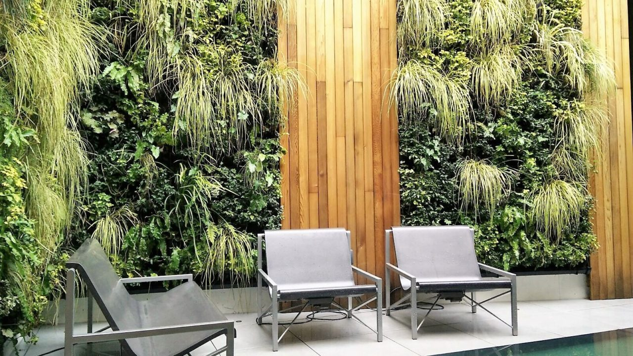 The Benefits of Living Walls in the Built Environment