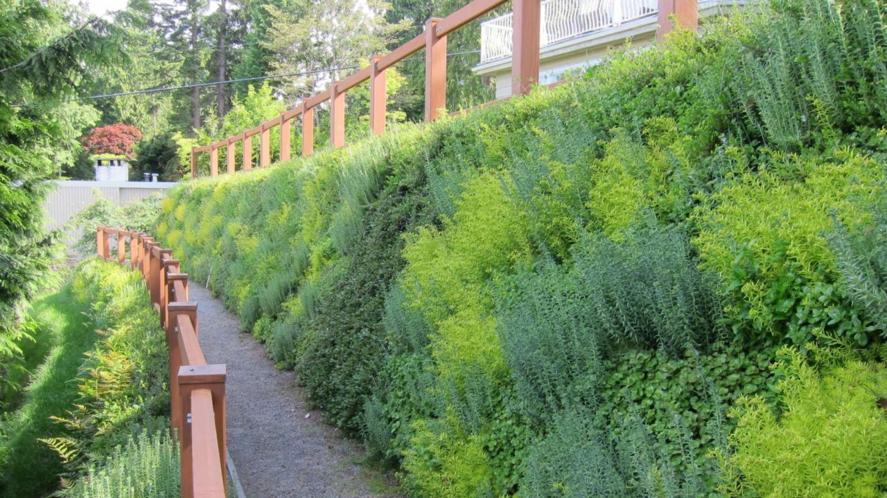 Vegetated retaining living wall - Flex MSE