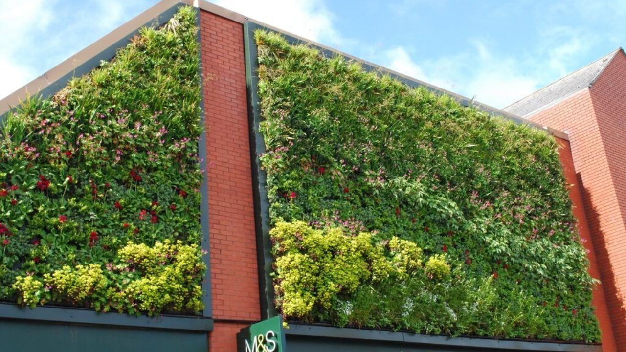 Living Walls in the Retail Environment