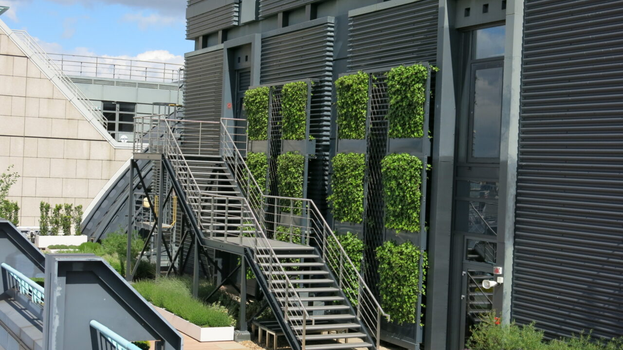 Ivy Screen Living Walls to trap Particulate Matter