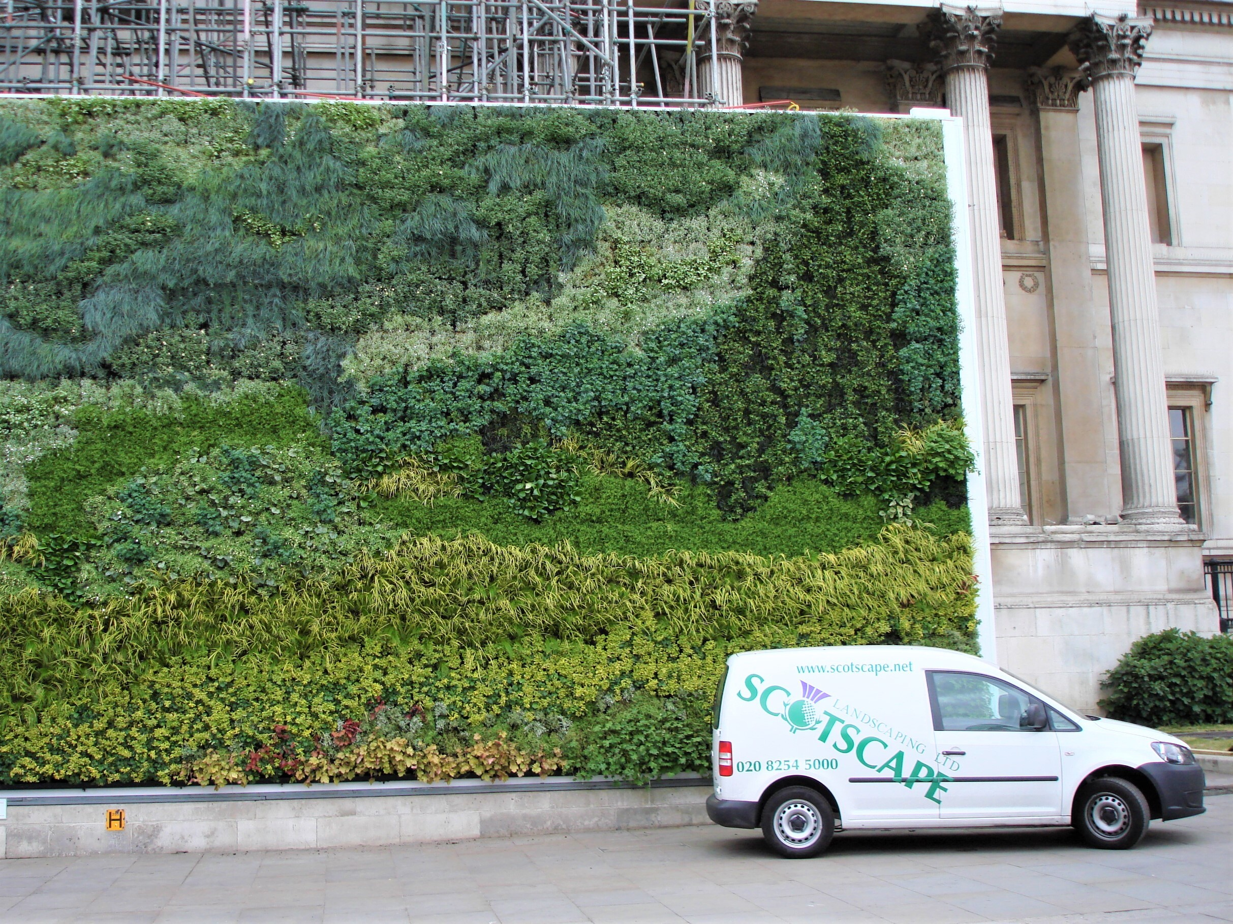 Van Gogh Living Wall at the National Gallery installed by Scotscape