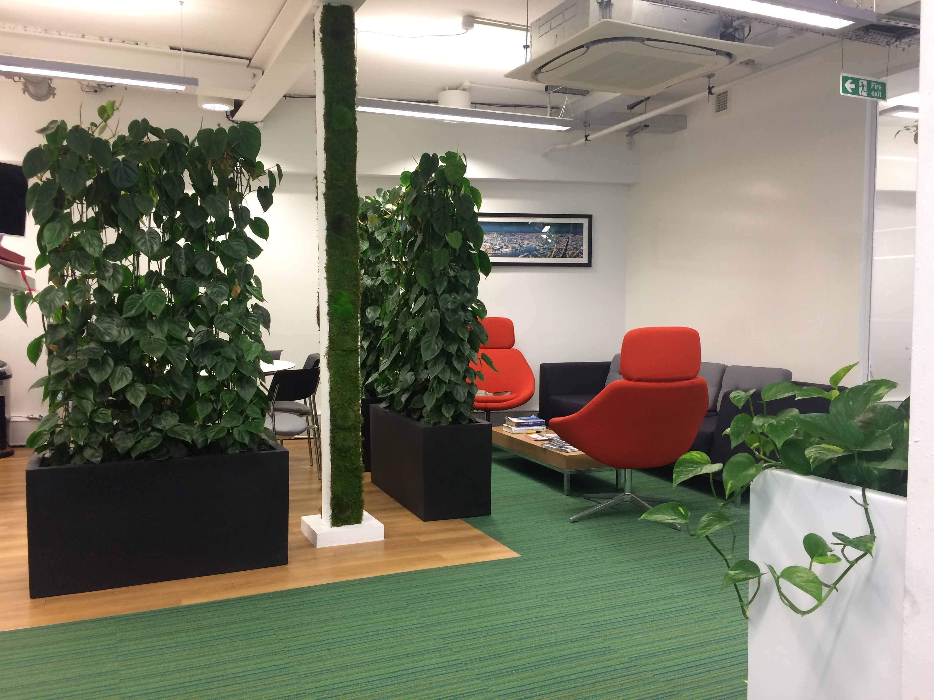 Living Wall interior landscaping CCM