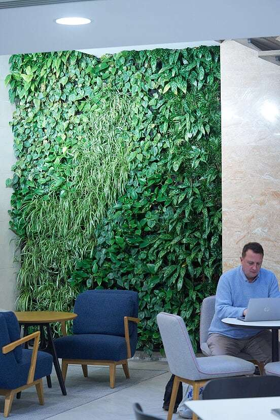Interior Living Walls Grosvenor Britain and Ireland