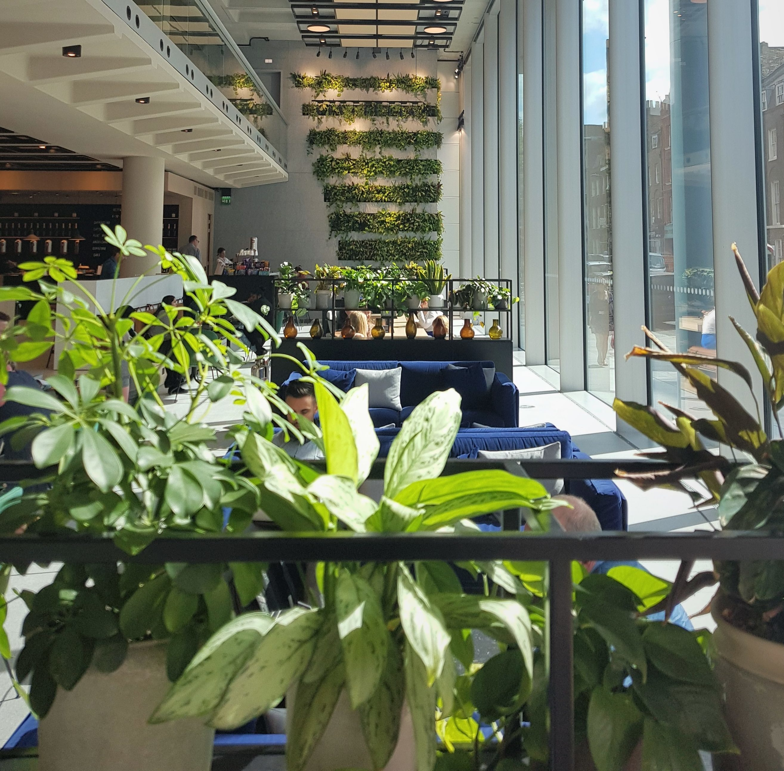 Living Walls and Plants at ITN