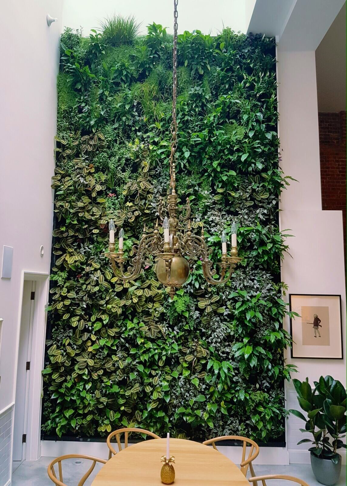 Domestic Interior Living Wall London