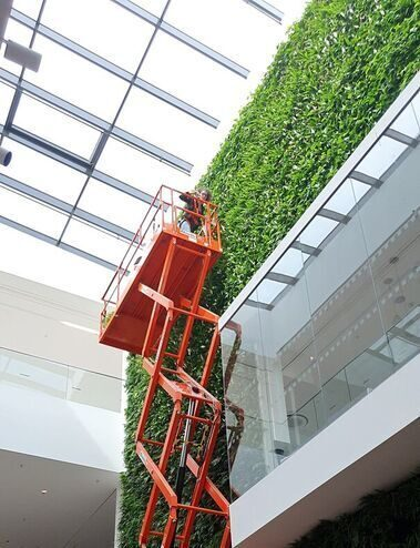 Jaguar Land Rover living wall maintenance