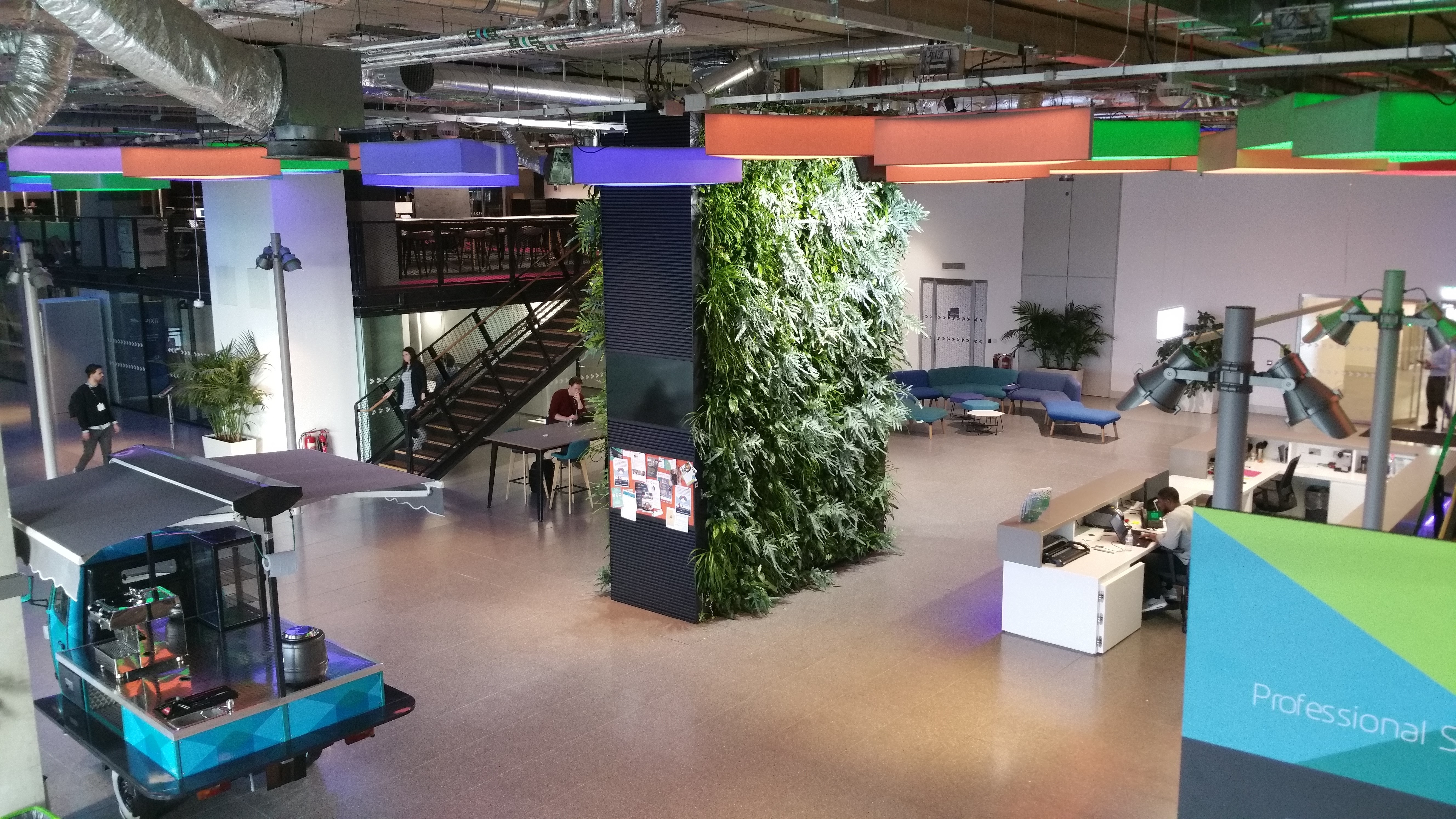 Living Walls and Plants to support improved Mental Health Office View