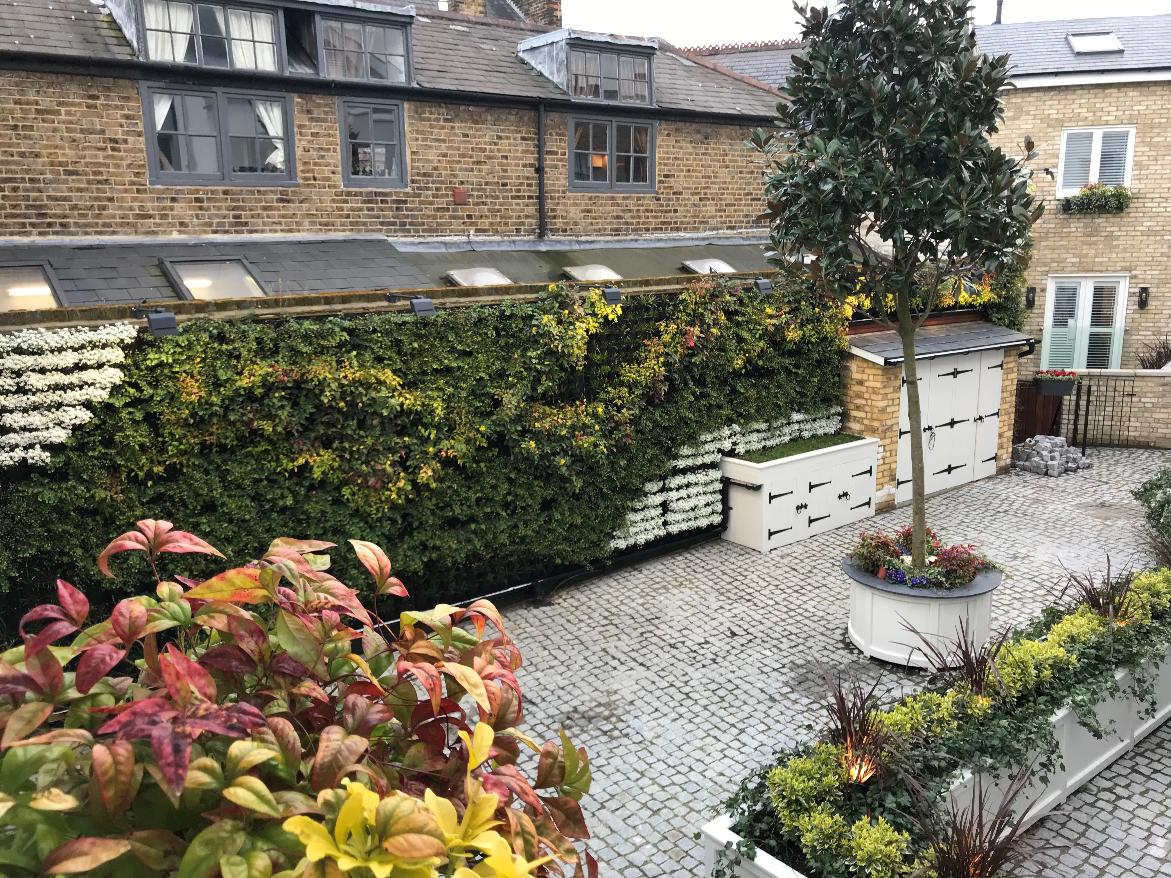 Living Walls for Property Developers Image of courtyard garden with Living Wall