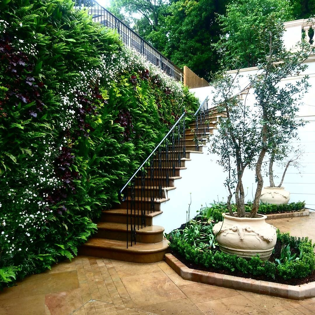 Living wall Green wall outdoor stairs