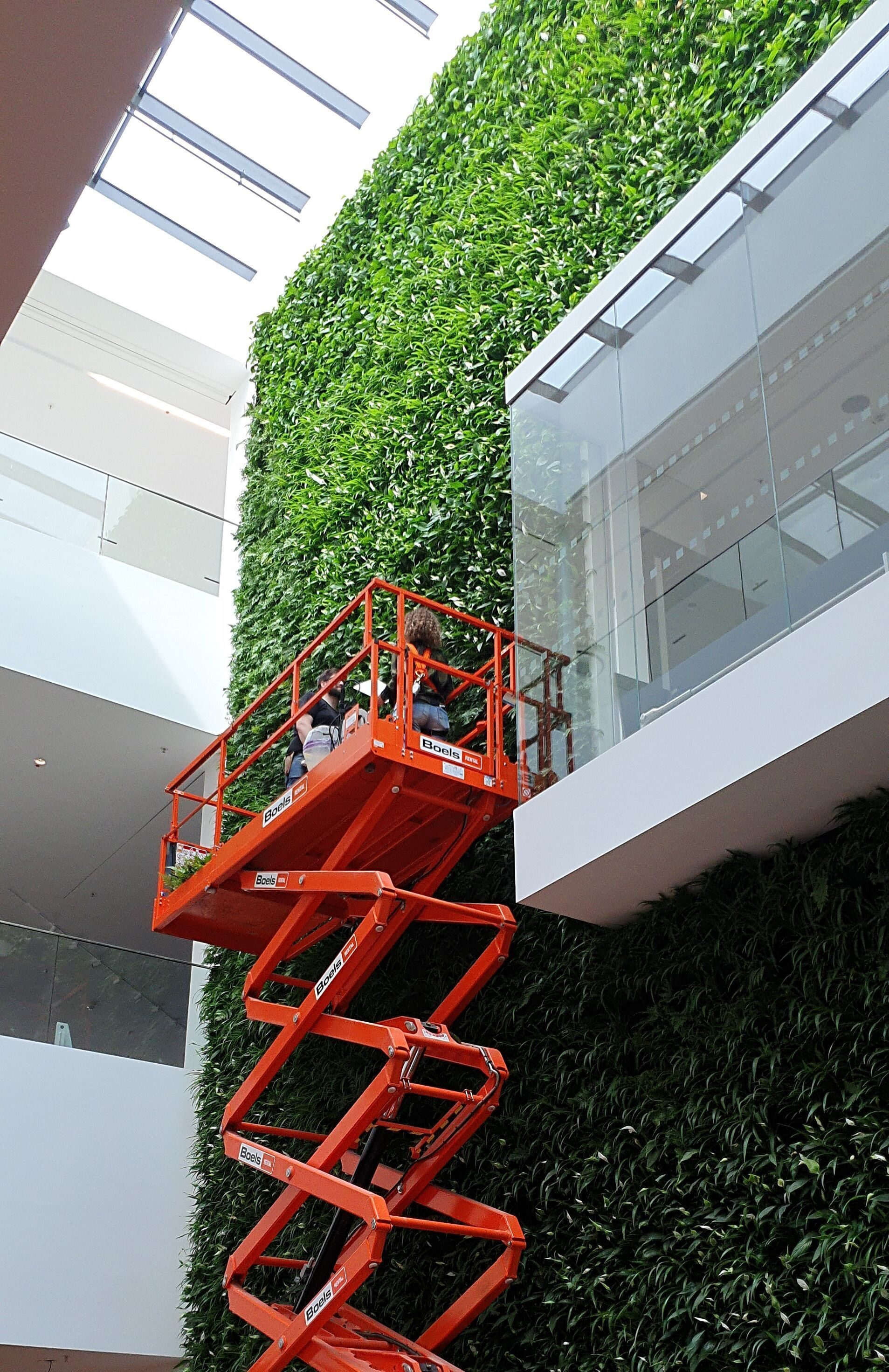 Living Wall Maintenance Jaguar Land Rover Munich