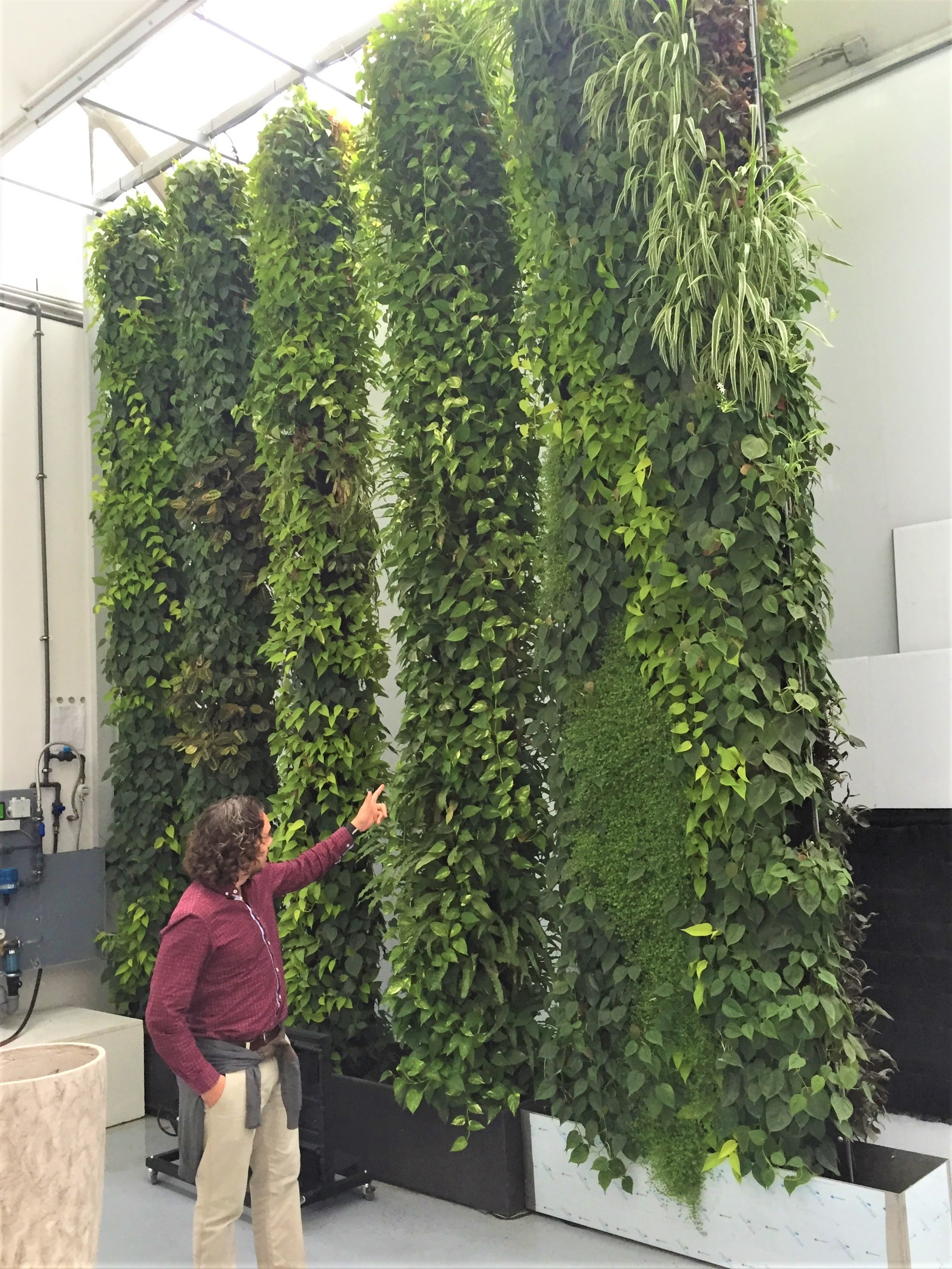 Living Wall Fytotextile Flexible System